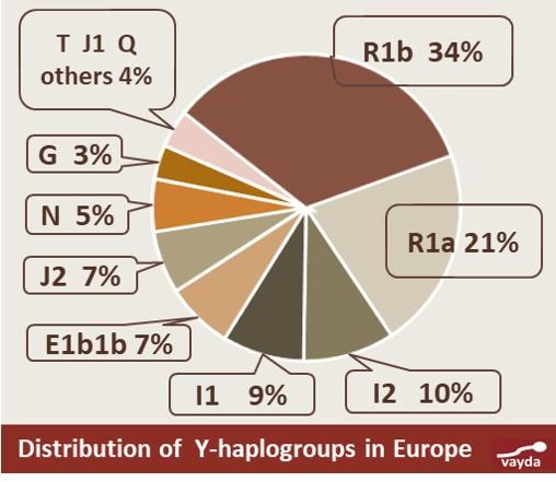 YDNA haplogroup I and main subclades - Slavic haplogroup R1a